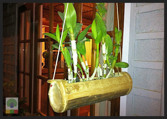 8 Innovative Uses for Bamboo in Myanmar