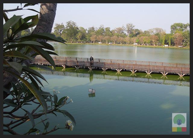 Kandawgyi Lake - Yangon - Myanmar (Burma) 2