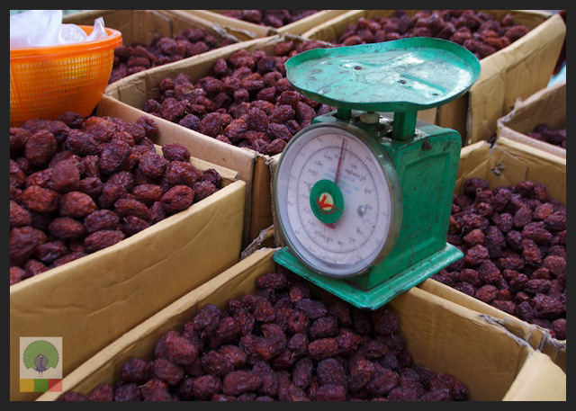 Sour Plums - fruit stall - Myanmar (Burma)