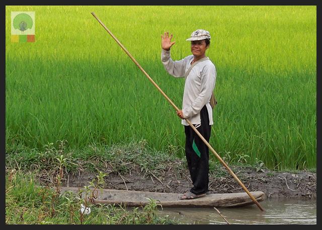 Smiles - Burmese man in his teak canoe - Rice fields at Pha-an - Myanmar (Burma)