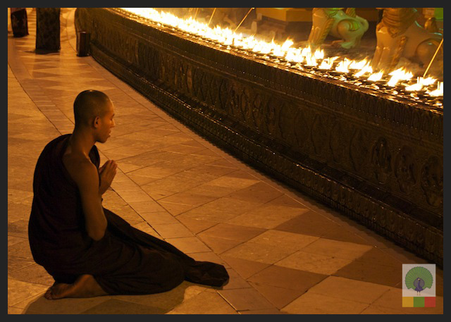 Shwedagon Pagoda by night - Monk Praying - Yangon - Myanmar (Burma)