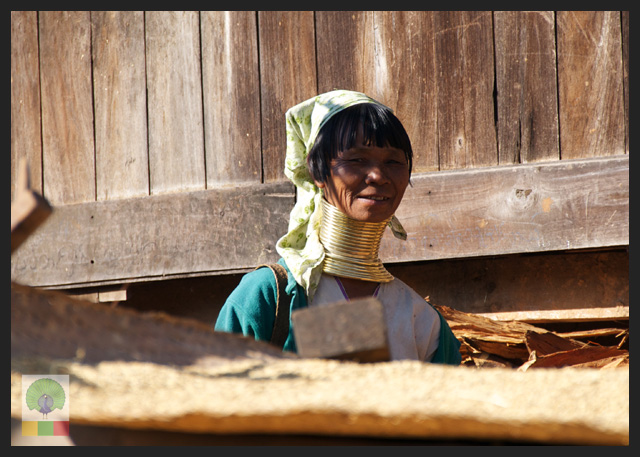 Padaung Ethnic Group Woman - near Loikaw - Kayah State - Myanmar Travel Essentials 2