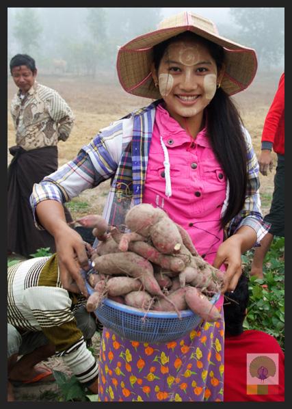 NEED Eco-village Foundation - Eco-farming school - Myanmar Travel Essentials 13