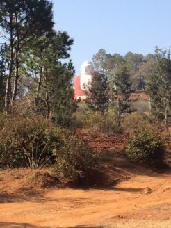 Buddha - Green Valley Elephant Camp - Myanmar Travel Essentials