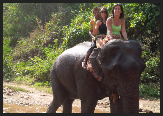 Discovering the Green Valley Elephant Camp