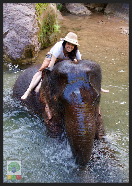 Perfect Family Trip - Kalaw Elephant Camp - Myanmar Travel Essentials 3