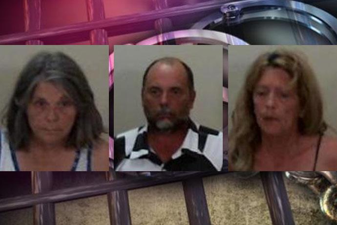 three arrested_1528219822984.jpg.jpg