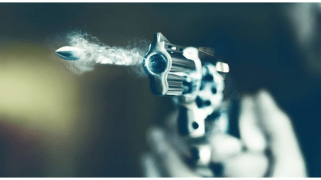 gun_1548650963418.PNG