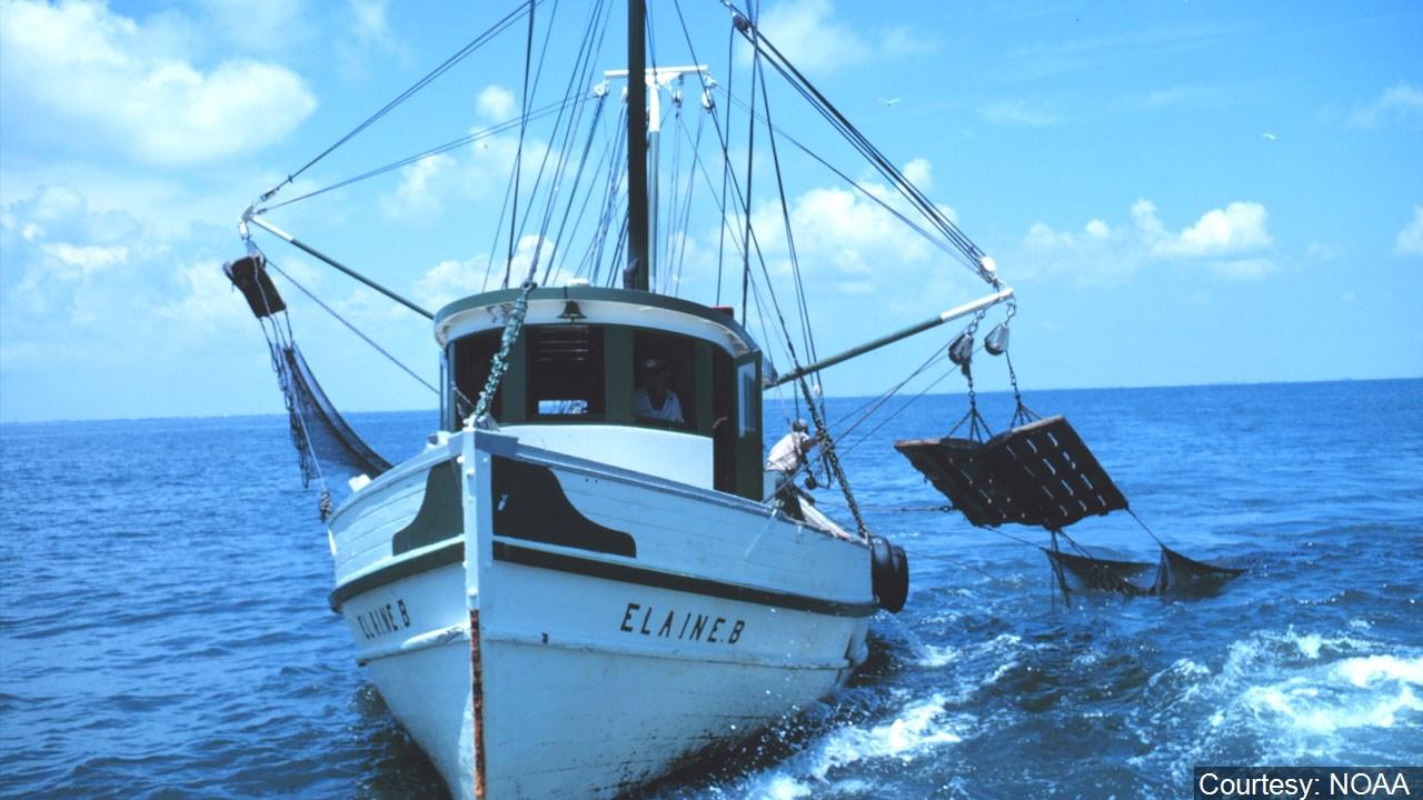 shrimping boat_1560973027167.jpg.jpg