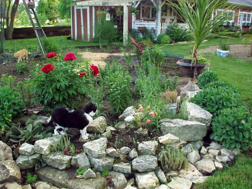 20 Beautiful Gardening with Rocks Design Ideas on Small Garden Ideas With Rocks id=22812