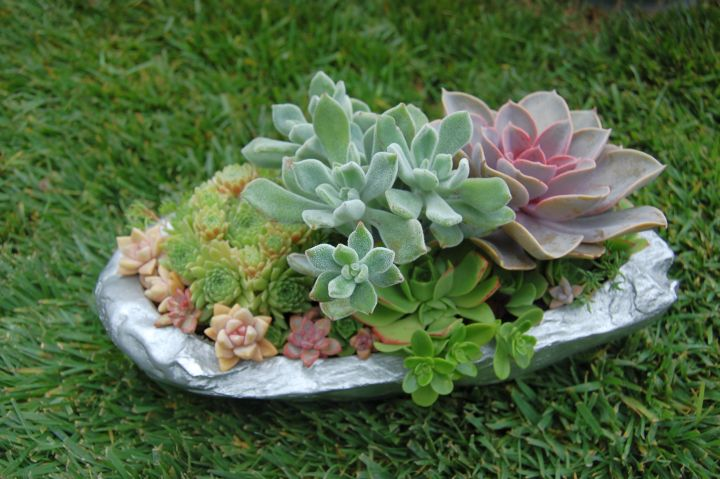 18 Simple Small Rock Garden Designs on Small Garden Ideas With Rocks id=29864