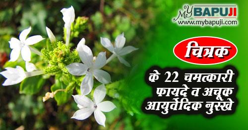 chitrak ke fayde aur nuksan in hindi
