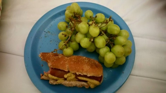 Dinner (6 vegan dogs and 2 3/4 pounds of grapes)