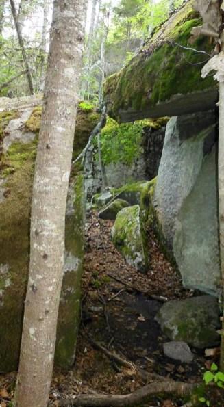 Trail on Moxie Bald