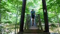 Tye River suspension bridge