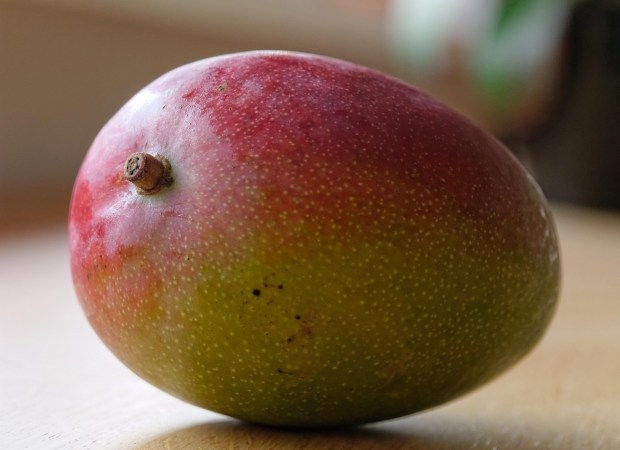 SavingStar Healthy Offer of the Week - Mangoes