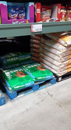 iams dog food new coupons and deal at bjs wholesale club