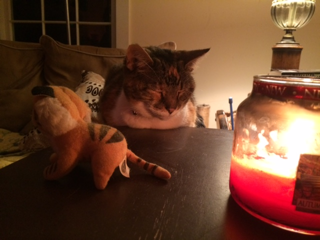 Isabella enjoys Christmas candlelight