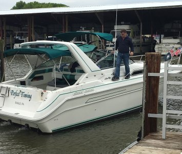 sea ray boat