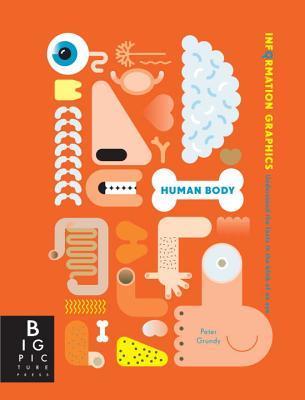 Infographics: Human Body