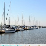 FREE Things to do on St Simons Island