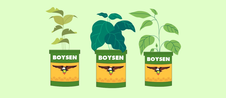 Upcycling Boysen Paint Cans: Paint Pots to Plant Pots | MyBoysen
