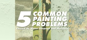 5 Most Common Paint Problems Caused By Water Seepage and Moisture