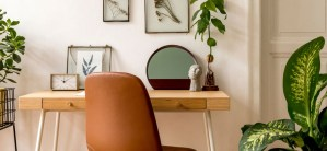 Got Greenery? 5 Home Color Ideas for Plant Lovers