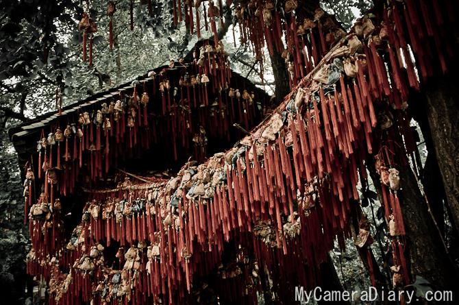 Chengdu.2011.blog-0056