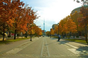 Toronto-Photo1