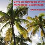 Vivre en métropole et investir en Martinique, Guadeloupe, Guyane