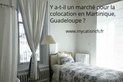 y a t-il un marché pour la colocation en Martinique Guadeloupe