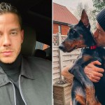 My Celebrity Life – Scott Thomas had purchased a Doberman Pinscher Picture Getty ImagesInstagram