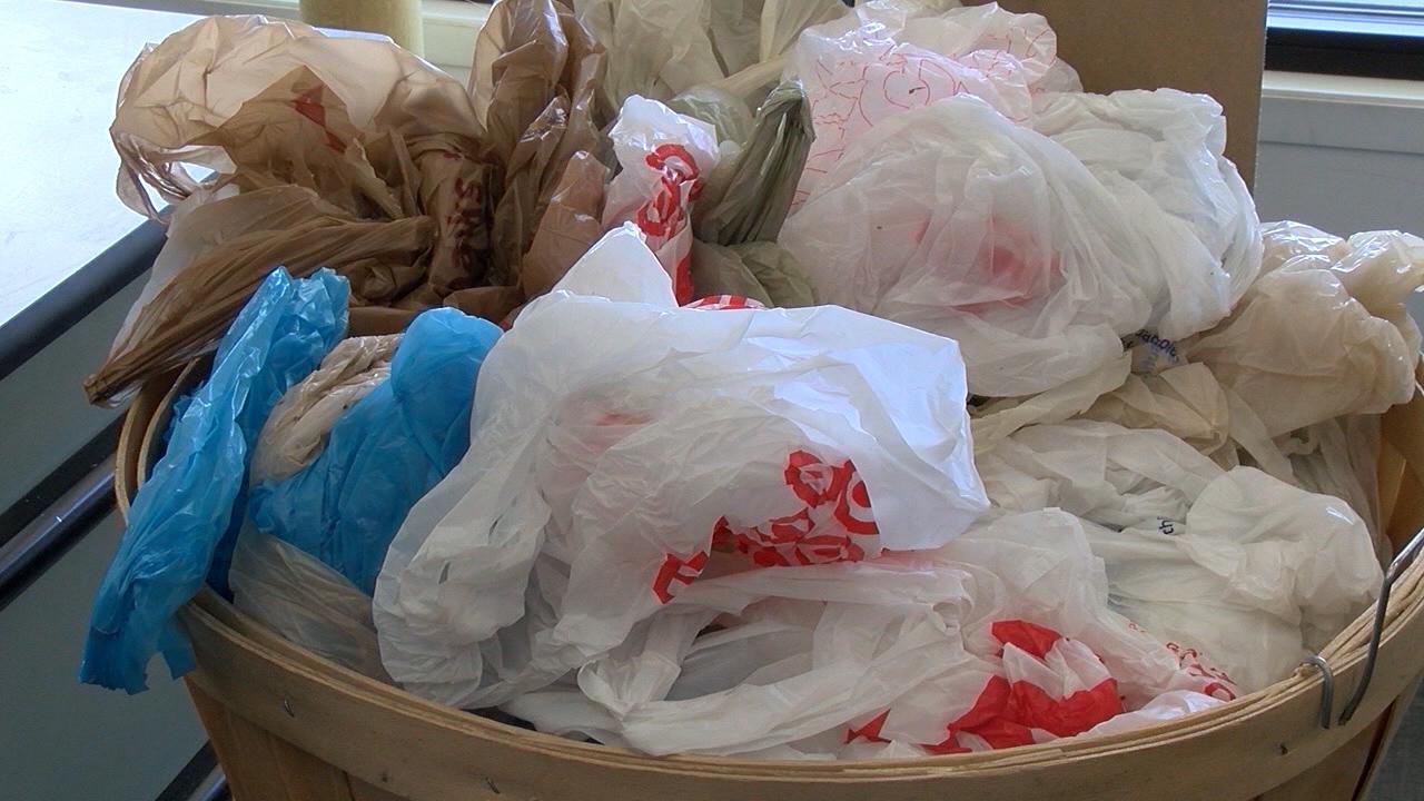 plastic bags_1553891639555.jpg.jpg