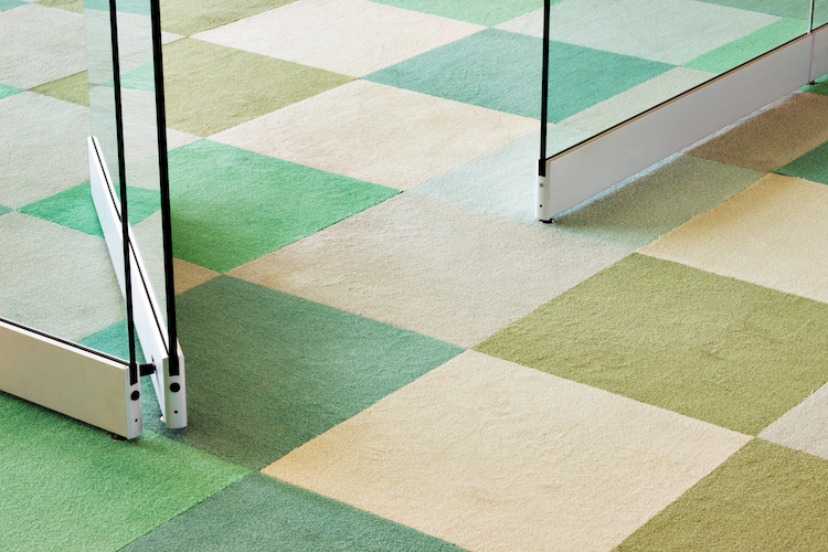 the healthiest non toxic carpet brands my chemical free house