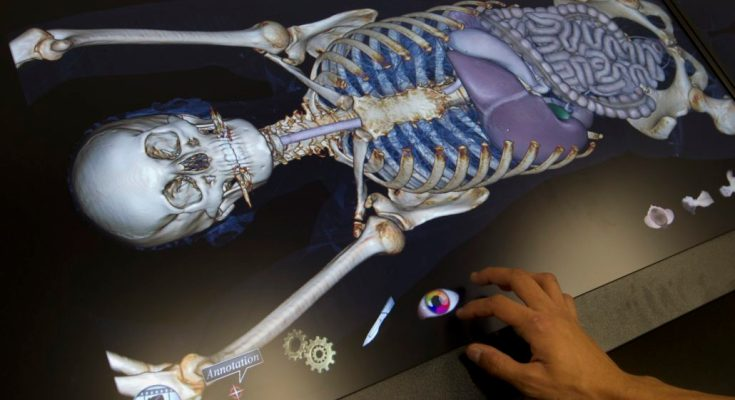 Immaculata University Receives Grant for an Anatomage Table to Conduct Virtual Dissections