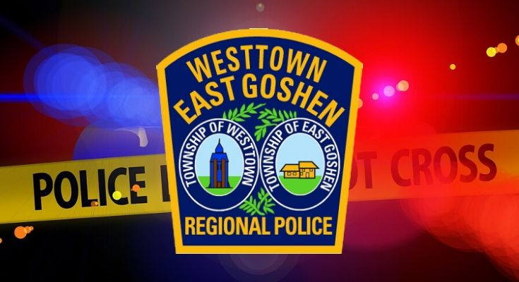 Male Arrested for Attempted Illegal Purchase of a Firearm in East Goshen Township