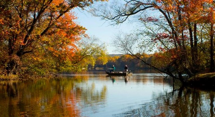 Pennsylvania Experts Offer Foliage Tips For Residents, Travelers