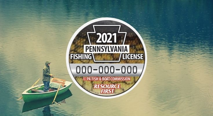 Voters Select Chain Pickerel Design for 2021 Collectible Fishing License Button