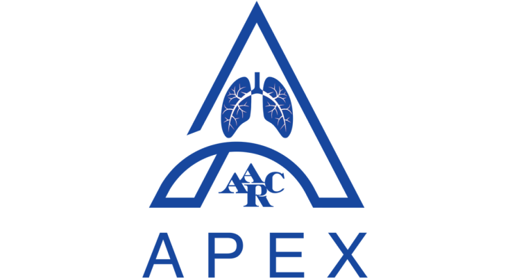 Apex Recognition