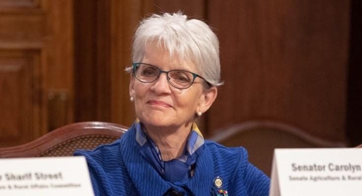 State Senator Carolyn Comitta
