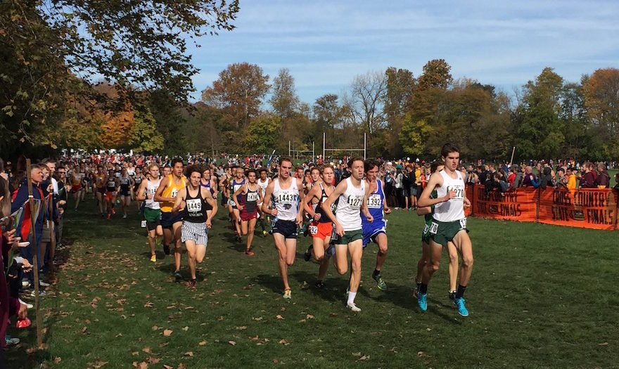 ihsa state cross country meet