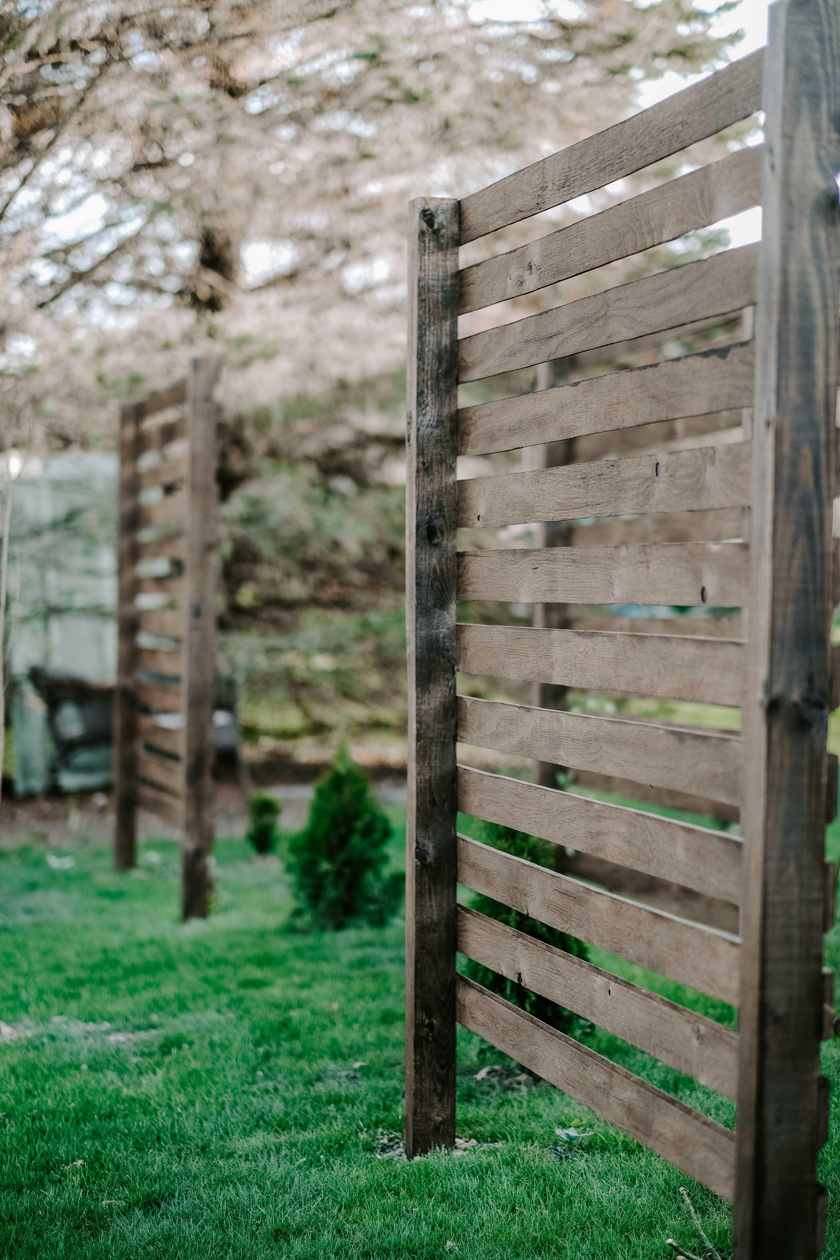 backyard landscaping horizontal wood trellis