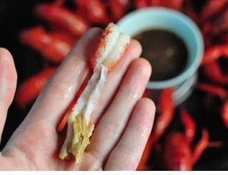 How to Eat Crayfish Like a Pro Step5