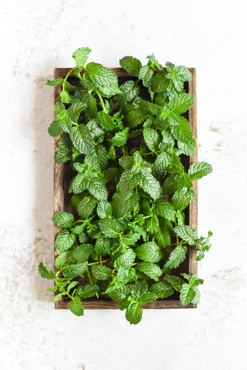 Mint Taste Reviews and Uses In Chinese Cuisine