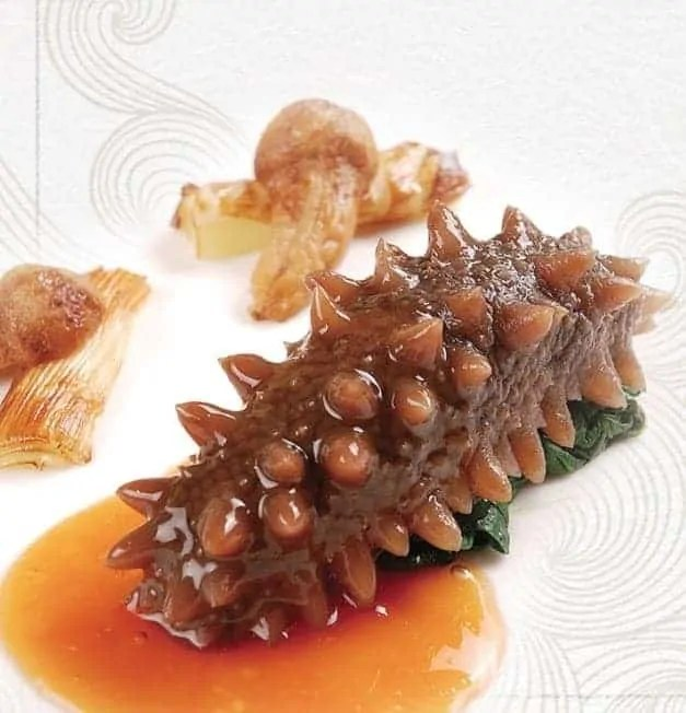 Sea Cucumber Taste Reviews and Cooking Guides