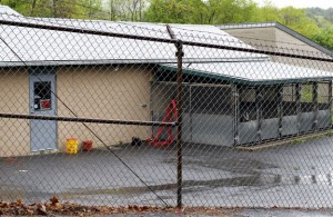 The borough will not fill the animal control officer position for the 2011-12 fiscal year. The position was left vacant when Kristy Sturges resigned last month following an investigation into the mishandling of an animal abuse case. RA ARCHIVE