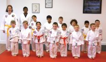 Sokol's Taekwondo LLC held a rank testing June 16. The following students were promoted to 1st degree Black Belts: Michele Turecek, Chirs Turecek, Trevor Simmons and Simon Khairallah. Kim Kiernan achieved the rank of Black Belt Recommended.