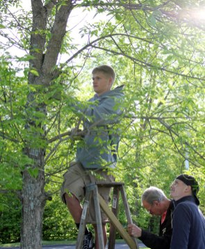 Woodland Regional High School senior Mike Classy, 18 of Beacon Falls, put up 26 birdhouses around the school's campus in Beacon Falls May 17 for his senior project. For his project, Classy assembled, painted and put up the birdhouses as a tribute to the victims of the Sandy Hook Elementary School shooting. Each birdhouse had the initials of a victim painted on it. Classy explained he was struggling trying to think of a senior project, then the events at Sandy Hook occurred in December. He said Woodland teacher Joelle Kilcourse suggested he do a project in honor of the victims and tie it in with the 26 Acts of Kindness campaign. Classy said the idea behind the birdhouses is to bring new life to all the victims of the shooting and around campus. 'I hope it can be seen for years to come as a tribute to Sandy Hook and brings wildlife and nature to our campus,' he said. Fellow senior Kirk Chamenko and security guard Fred Smith assisted Classy with putting the birdhouses up. –ELIO GUGLIOTTI
