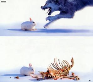 raptor-bunny.jpg
